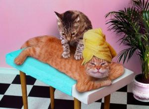 1 massage